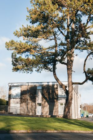Farmyard Block Dorm With Scotch Pine