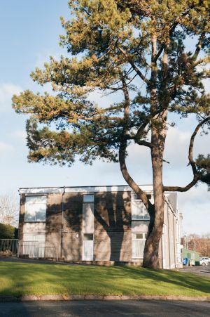 Farmyard Block Dorm With Scotch Pine