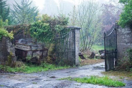 MI Back Farm Gate