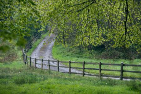 MI Driveway