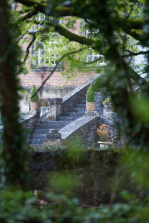 MI Steps Through Bushes